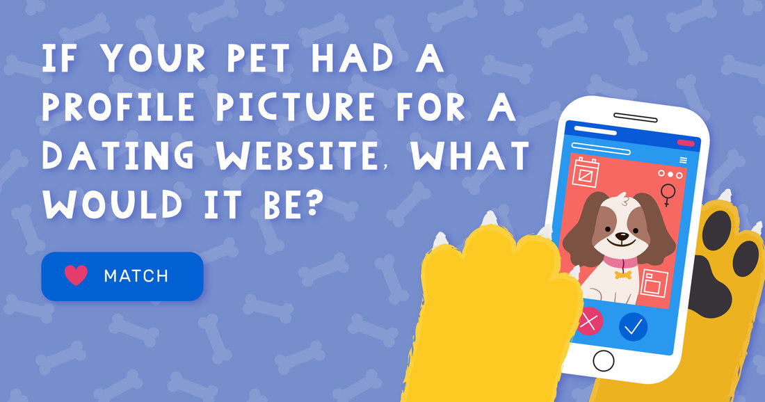 Enter the dog dating picture today. You could win a free grooming prize!