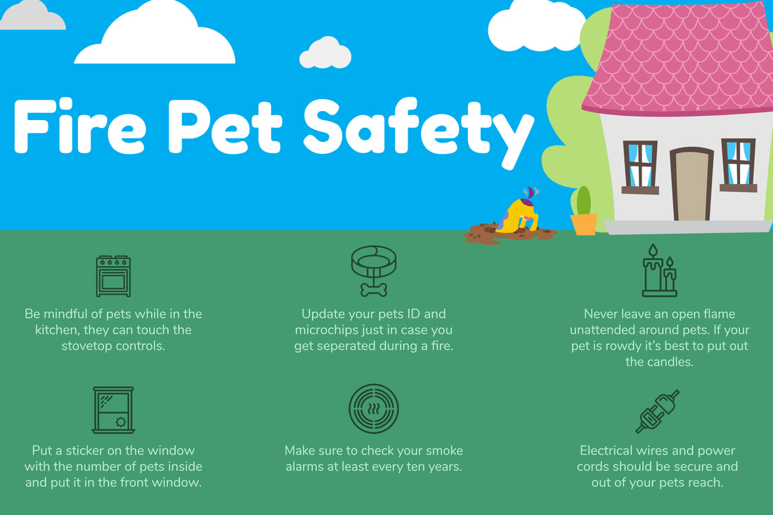 Learn more about pet fire safety.